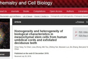 都是间充质干细胞的来源,存脐带还是存乳牙?
