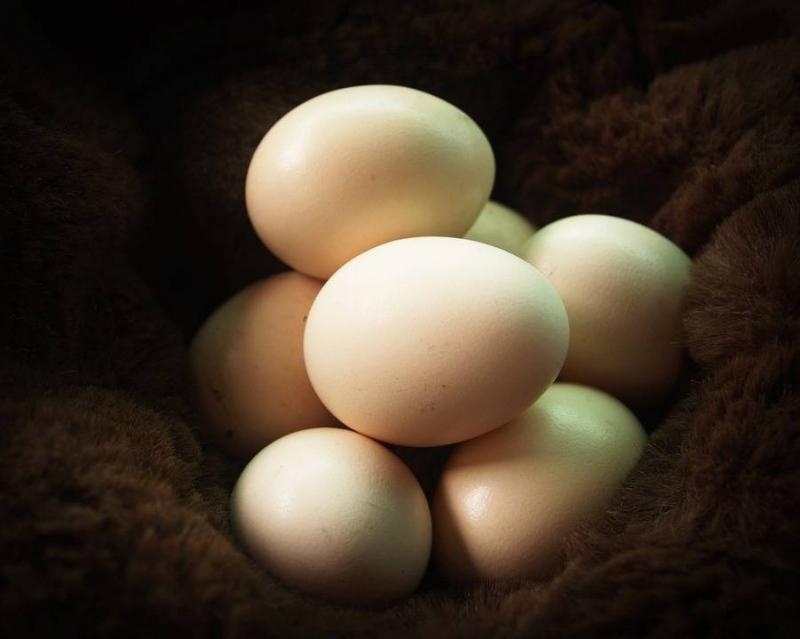 导致血清总胆固醇高的原因四大原因可致血清总胆固醇高